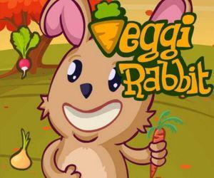 Veggi Rabbit